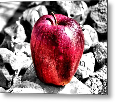 Red Apple Metal Print by Karen Scovill