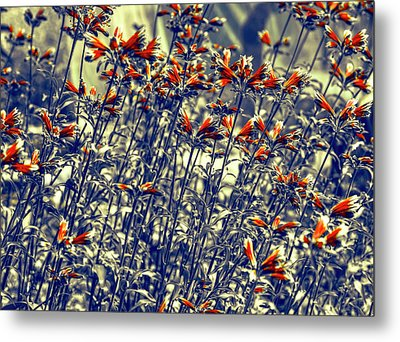Metal Print featuring the photograph Red Army by Wayne Sherriff