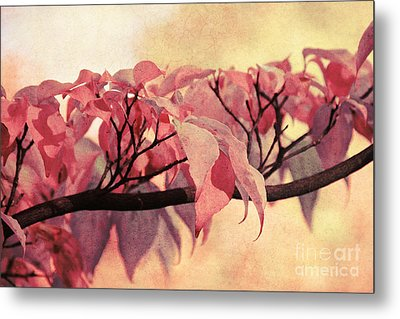 Red Autumn Day Metal Print by Angela Doelling AD DESIGN Photo and PhotoArt