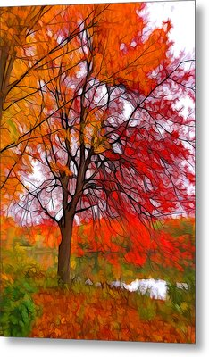 Red Autumn Tree Metal Print by Lilia D