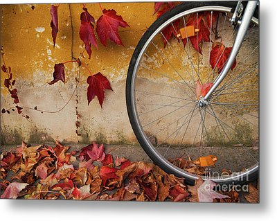 Metal Print featuring the photograph Red Autumn by Yuri Santin