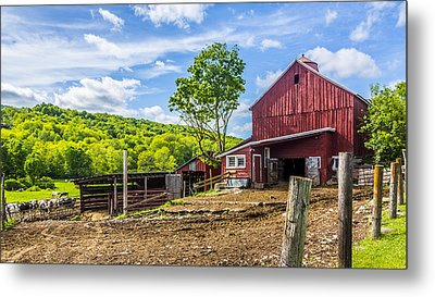 Metal Print featuring the photograph Red Barn And Cows by Paula Porterfield-Izzo
