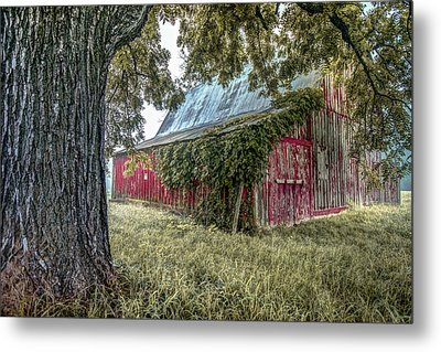 Red Barn And Framing Tree Metal Print by Gregory Ballos