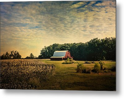 Red Barn At The Cottonfield Metal Print by Jai Johnson