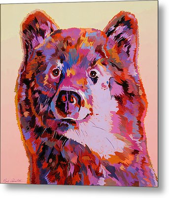 Red Bear Metal Print by Bob Coonts