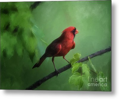 Metal Print featuring the digital art Red Bird On A Hot Day by Lois Bryan