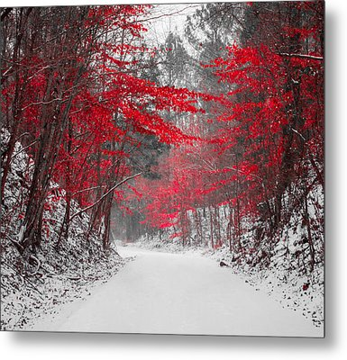 Red Blossoms Horizontal Metal Print by Parker Cunningham