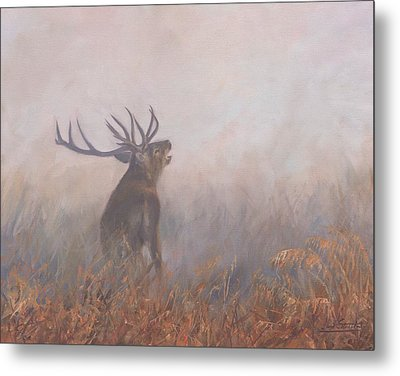 Metal Print featuring the painting Red Deer Stag Early Morning by David Stribbling