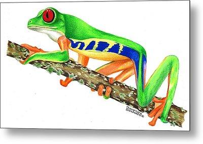 Red Eyed Tree Frog Metal Print by Sharon Blanchard