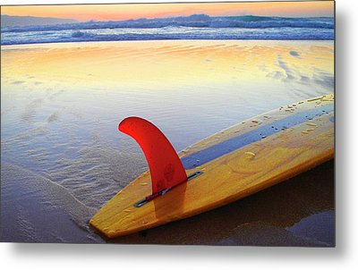 Red Fin Sunset Metal Print by Sean Davey