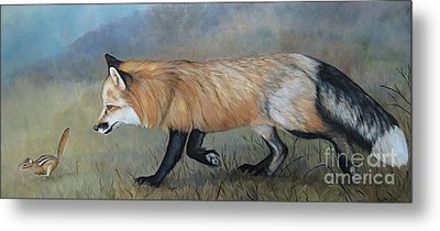 Red Fox Encounter Metal Print by Charlotte Yealey