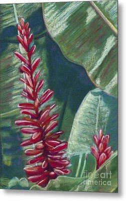 Red Ginger Metal Print by Patti Bruce - Printscapes