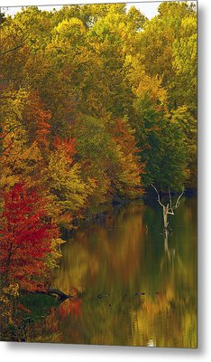 Red Gold And Green Metal Print by Edward Kreis