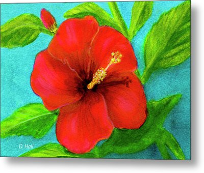 Red Hawaii Hibiscus #238  Metal Print by Donald k Hall