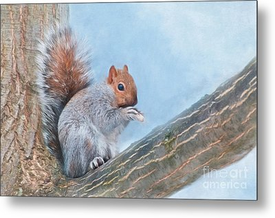 Red Head Metal Print by Kathleen Rinker