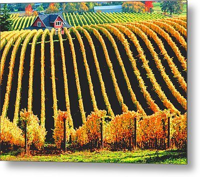 Red Hills Of Dundee Metal Print