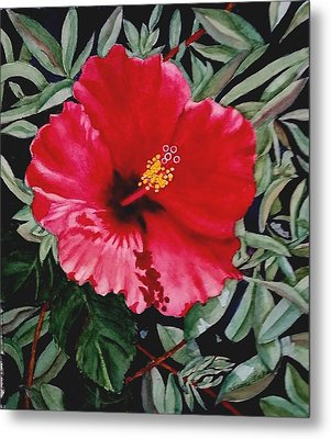 Red Hybiscus Metal Print