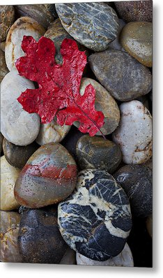 Red Leaf Wet Stones Metal Print