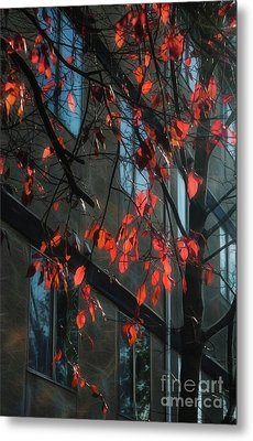Metal Print featuring the photograph Red Leaves by Yulia Kazansky