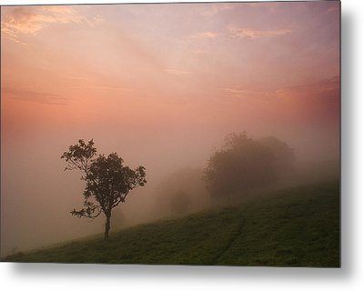 Red Mist On The South Downs Metal Print
