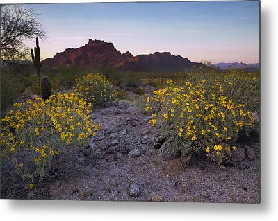 Red Mountain Dusk Metal Print