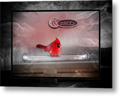 Red On Red Metal Print by Ericamaxine Price