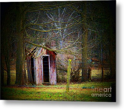 Red Outhouse Metal Print by Joyce Kimble Smith