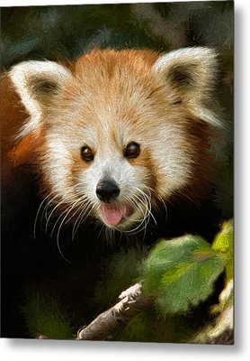 Metal Print featuring the photograph Red Panda by Lana Trussell