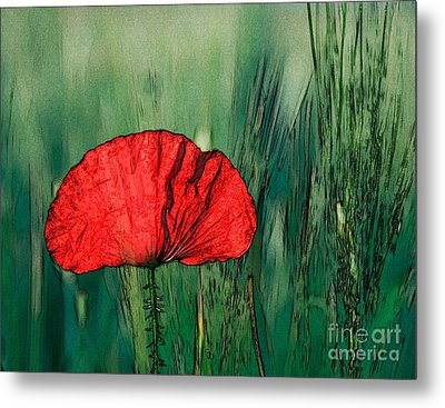 Metal Print featuring the photograph Red Poppy Flower by Jean Bernard Roussilhe