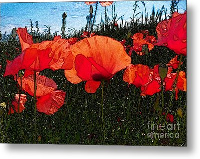 Metal Print featuring the photograph Red Poppy Flowers In Grassland by Jean Bernard Roussilhe