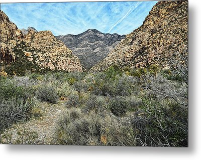 Metal Print featuring the photograph Red Rock Canyon - Nevada by Glenn McCarthy Art and Photography