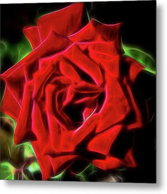 Red Rose 1a Metal Print
