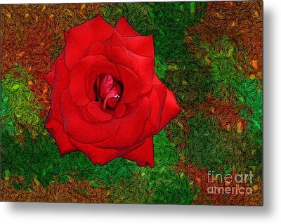 Red Rose 2 Metal Print by Jean Bernard Roussilhe