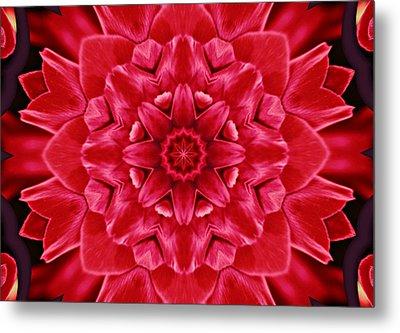 Red Rose Kaleidoscope Metal Print by Cathie Tyler