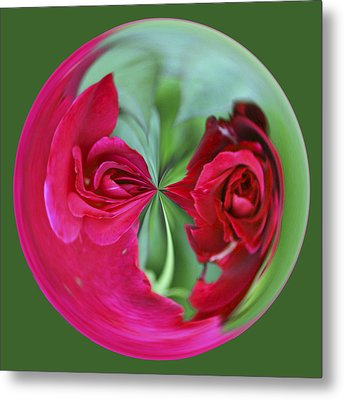 Metal Print featuring the photograph Red Rose Orb by Bill Barber