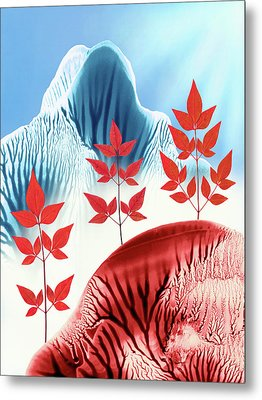 Red Rose Quarts And Serenity Blue Landscape 1 Metal Print by Amy Vangsgard
