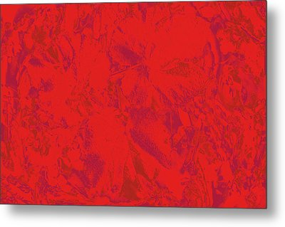 Metal Print featuring the photograph Red Rules by Nareeta Martin