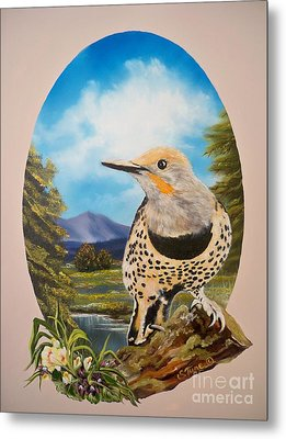 Red Shafted Flicker Metal Print