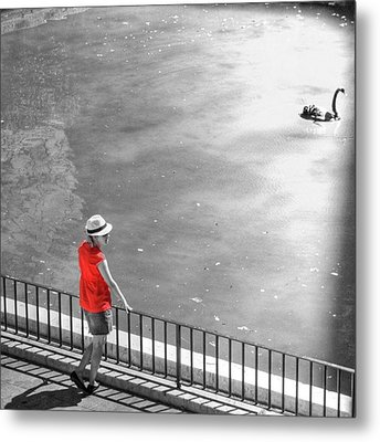 Red Shirt, Black Swanla Seu, Palma De Metal Print by John Edwards
