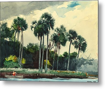 Red Shirt Homosassa Florida Metal Print