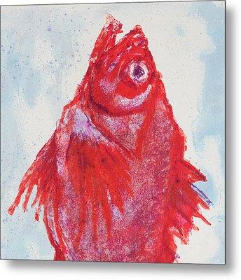 Red Snapper,head  Metal Print by Martin Stankewitz