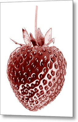 Red Strawberry Botanical Illustration Metal Print by Frank Tschakert