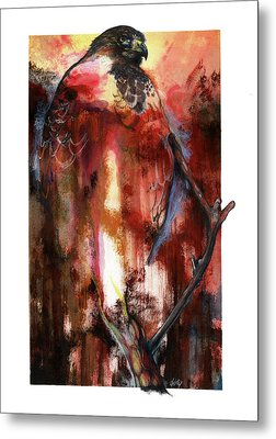 Red Tail Metal Print by Anthony Burks Sr