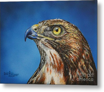 Red-tailed Hawk......honor Metal Print