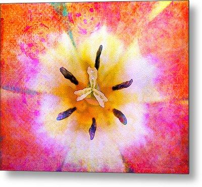 Red Tulip Metal Print by Moon Stumpp