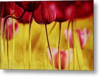 Red Tulips Metal Print by Iris Greenwell