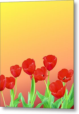 Red Tulips Metal Print by Kristin Elmquist