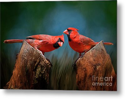 Metal Print featuring the photograph Redbird Sentinels by Bonnie Barry