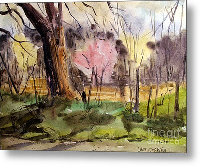 Metal Print featuring the painting Redbuds And Morels Matted Glassed Framed by Charlie Spear