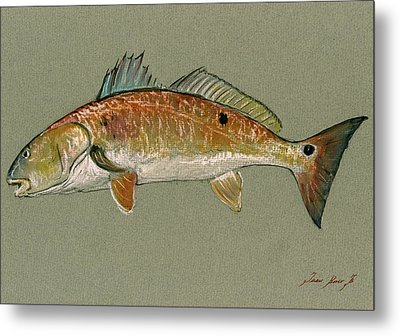 Redfish Watercolor Painting Metal Print